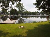 OPEN HOUSES Aug 1 & 2, 1-4 pm, waterfront 3+1 bedroom house