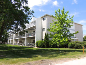 2 Bedroom condo on Plessis rd