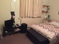 Spacious double room with huge wardrobe