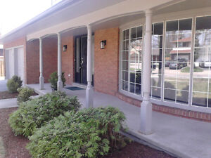 Mr.DoItAll/landscape & Property Maintenance Cambridge Kitchener Area image 7