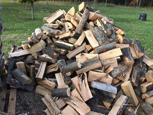 Seasoned Dry Firewood Kingston Kingston Area image 3