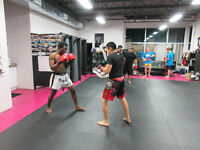 Muay Thai Kickboxing Boxing @ Legacy Fight Club Barrie