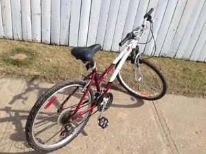 Raliehg bike