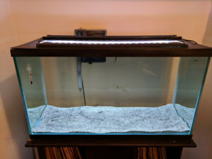 55 gallon fish tank with stand and accessories