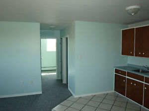 SPACIOUS 1 BEDROOM APT + BIG WALKING CLOSE OR OFFICE MAY