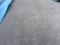 Brand New 9ft 2 inches by 10ft 3inches saxony carpet