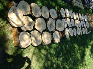 Wedding decorations/wood slices/center-pieces Kitchener / Waterloo Kitchener Area image 5