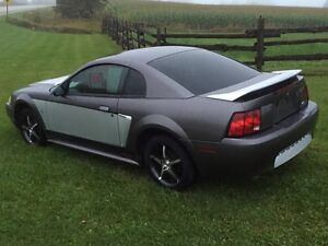 2000 Ford Mustang Cambridge Kitchener Area image 3