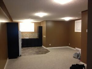 Large 1 Bedroom Basement Suite – Separate Laundry