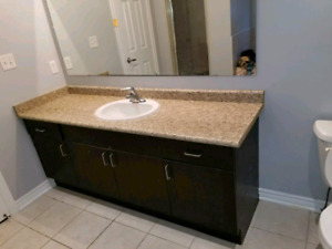 bathroom vanities with MOEN faucet
