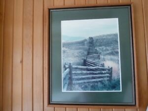 Picture of country fence