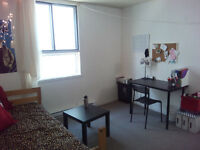 Large Room To Rent downtown / Metro Guy