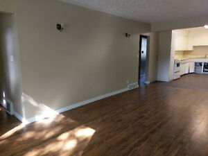 TONS OF ROOM!!  RECENTLY RENOVATED!!  CENTRAL LOCATION