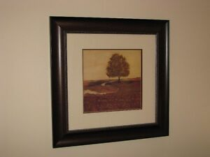 Framed Print and Canvas  / Cadre et toile