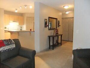 Opened House Nov 19-20 2-4 pm Strathcona County Edmonton Area image 3