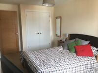 Large Room available in Cardiff for Rent from end of July 2017