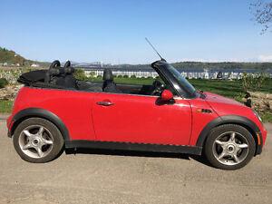 2007 MINI Mini Cooper Noir Cabriolet
