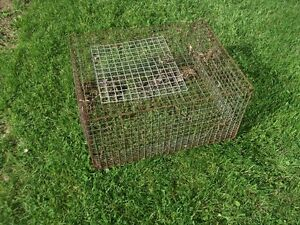 1 cages  a lapin en broche
