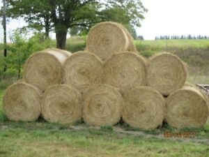 OAT STRAW FOR SALE
