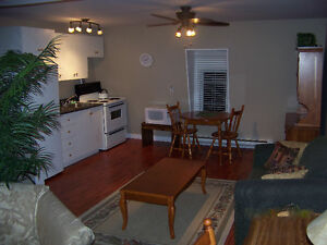 Downtown Top Floor Furnished Apt_ July 1, 2017