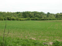 Land for Sale in Tara-The Saugeen Team