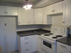 2 bedroom basement suite - NEWLY RENOVATED
