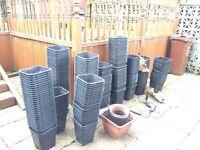 Job lot plant pots