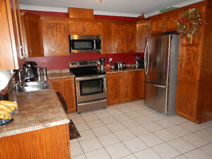 Fully Developed Home on 3/4 Acre lot in Torbay St. John's Newfoundland image 4