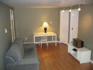 Renovated Garden Level Bachelor Suite with Separate Entrance