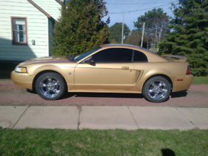 2000 Ford Mustang Family owned