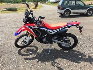 Brand New Honda CRF250 Rally *Limited*