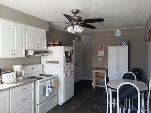 Newly Renovated 3 Bedroom 2 Storey Available March 1