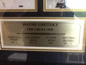 Gretzky - NHL Hockey History (Great X-Mas Present for Dad)