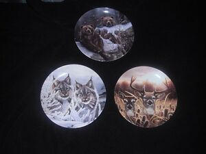 Eyes of the Wild - Bradex Plates - Excellent Condition Kingston Kingston Area image 2