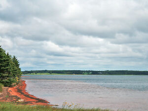 *NEW LOWER PRICE!* Beautiful North Shore PEI WATERFRONT ACREAGE