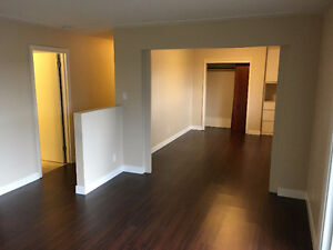 BACHELOR Apartment for Rent London Ontario image 3