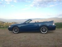 2000 mustang convertible REDUCED