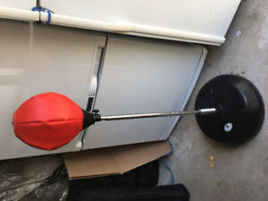 Stand up punching or boxing bag - $60