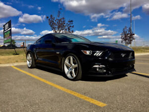 2015 Ford Mustang GT Premium Coupe (2 door)