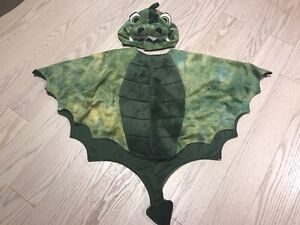 Dragonfly 2-3T costume