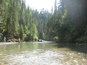 DOME CREEK with CABINS and PRISTINE CREEK FRONTAGE
