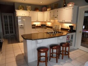 KITCHEN CABINETS AND COUNTER FOR SALE