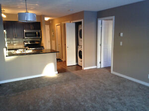 2 Bedroom near South Common Mall