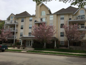 Beautiful Cathedral Area Condo For Rent