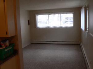 1 bedroom  basement suite in Crestwood 4-plex