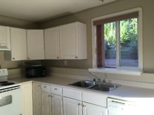 Large one bedroom furnished suite available January 1st, 2019