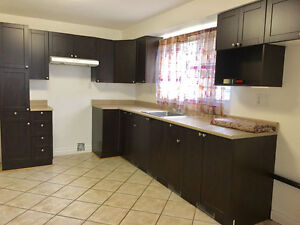 Renovated Spacious 3 1/2 for rent in Longueuil !!!