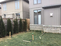 Excavating hole 14x11x8 feet deep for Walkout-NW London $400