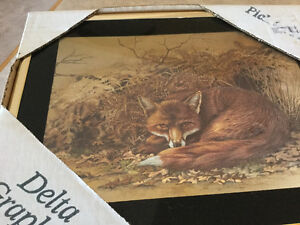 Picture of fox