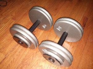 Professional dumbbells / poids 2 x 50 lbs. Like NEW